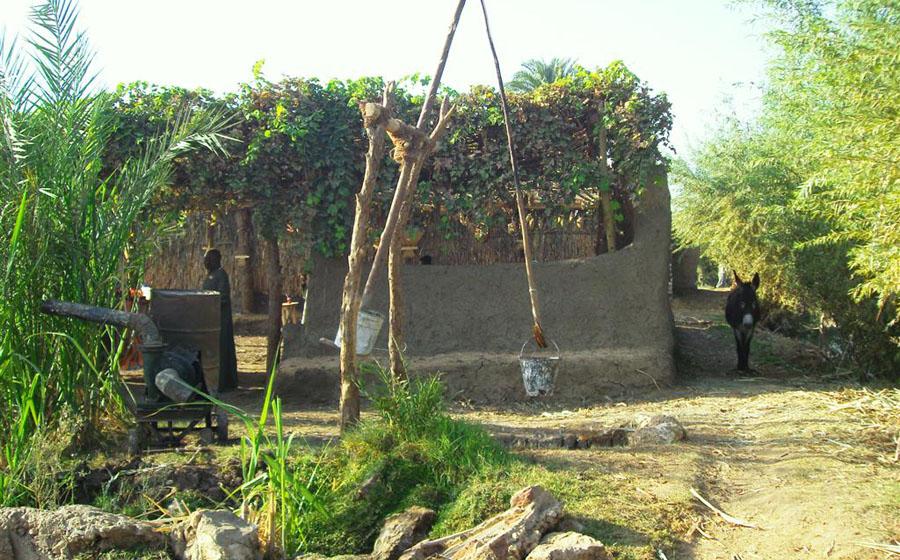 Egyptische boerderij
